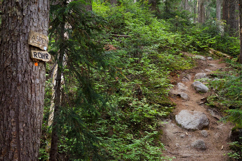 Marriott Basin trail Coast Mountains British Columbia