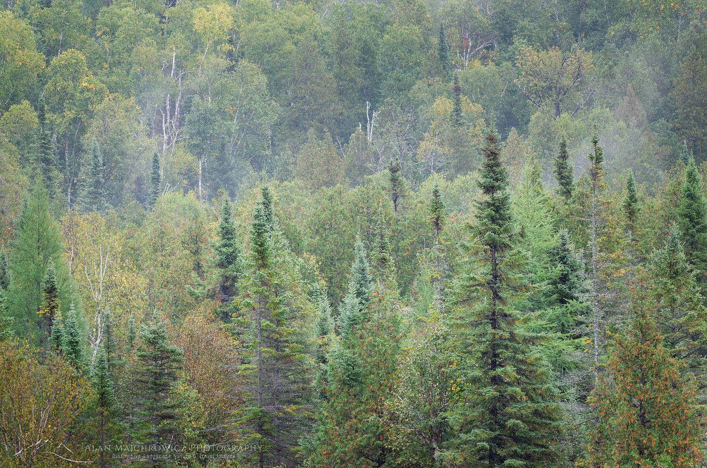 Superior National Forest Minnesota #64156 New Images Michigan Minnesota South Dakota Wyoming