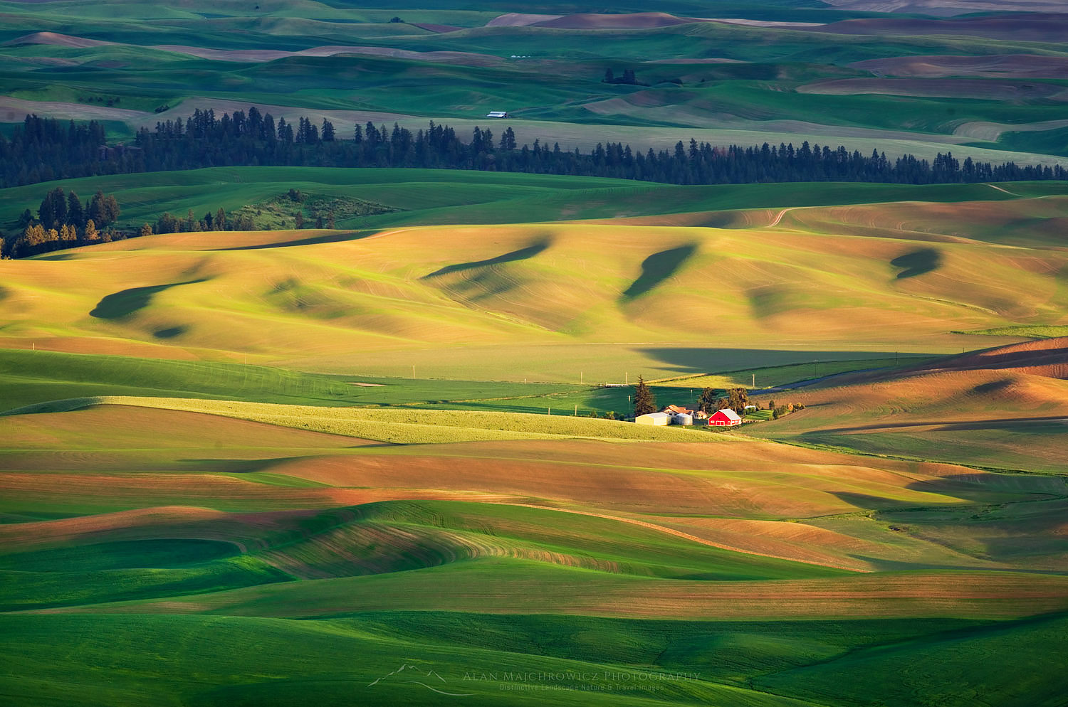 https://alanmajchrowicz.com/wp-content/uploads/2019/01/palouse_washington_51649.jpg