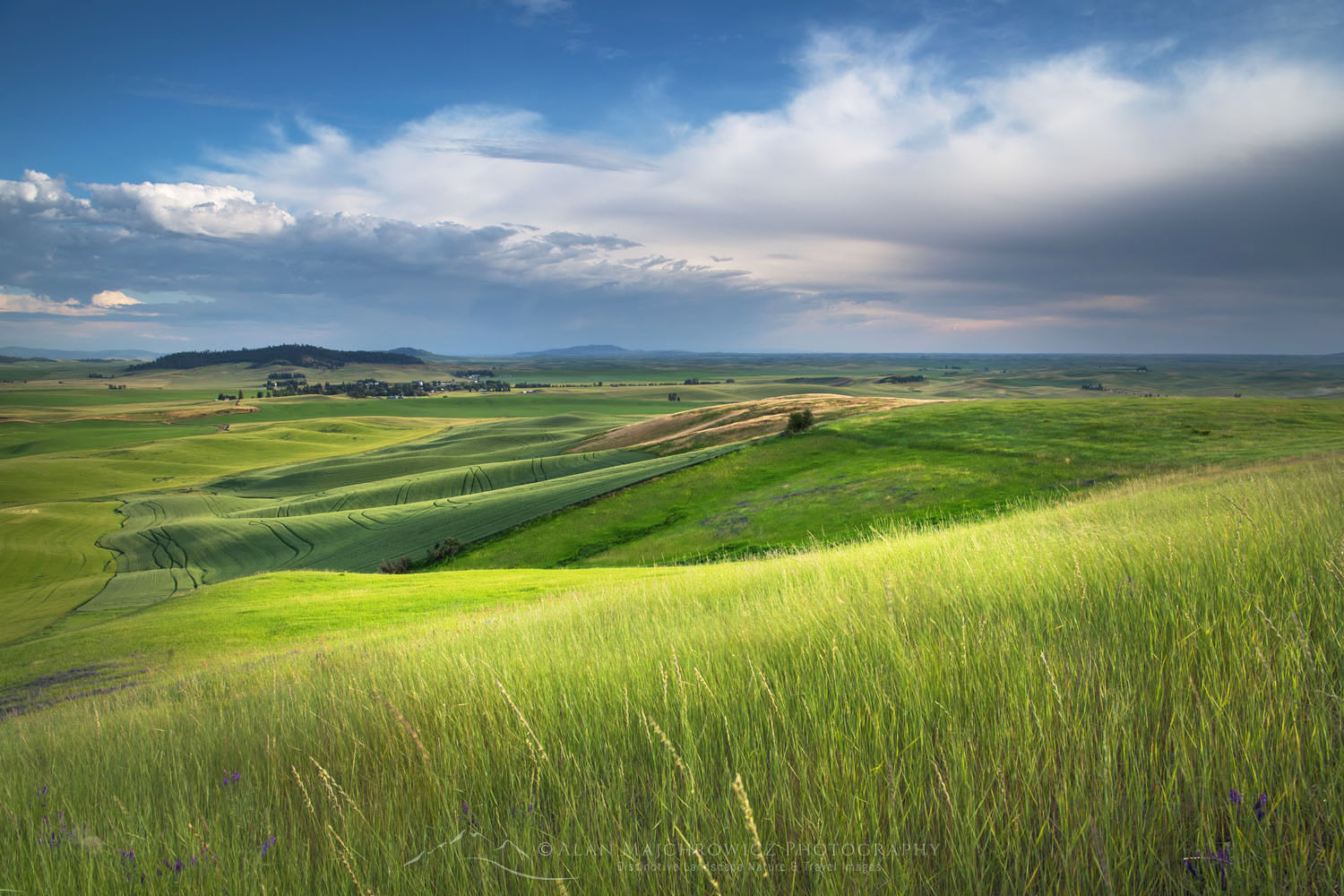 Palouse Washington New Images: Washington Oregon Idaho Wyoming