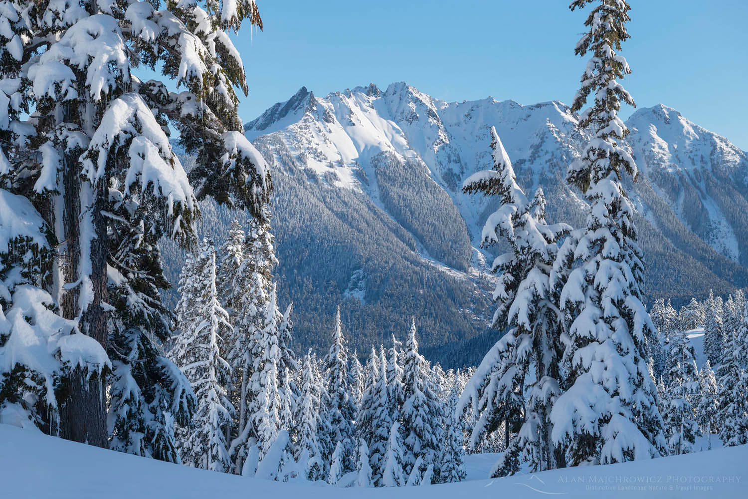 Nooksack Ridge in winter North Cascades Washington