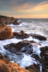 Shore Acres State Park Oregon Photo Highlights 2020