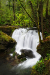 Whatcom Falls Bellingham Washington Photo Highlights 2020