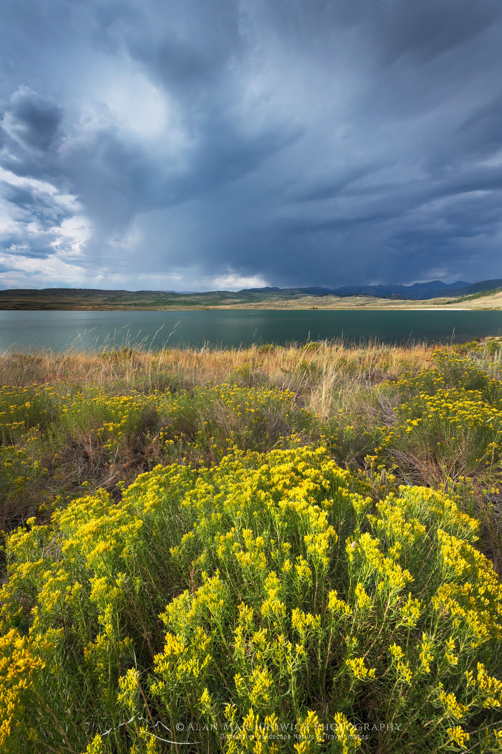 Rabbitbrush and Storm clouds over Soda Lake Wyoming