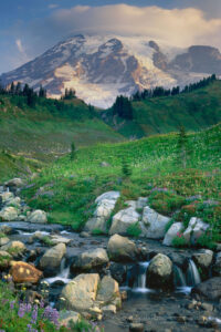 Mount Rainier and Edith Creek