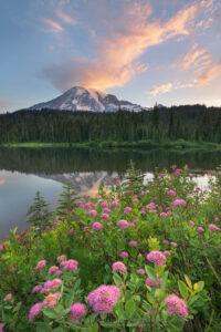 Mount Rainier sunrise from Reflection Lake Paradise Meadows