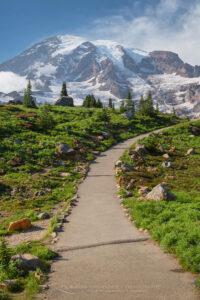 Paradise Meadows Skyline Trail Mount Rainier