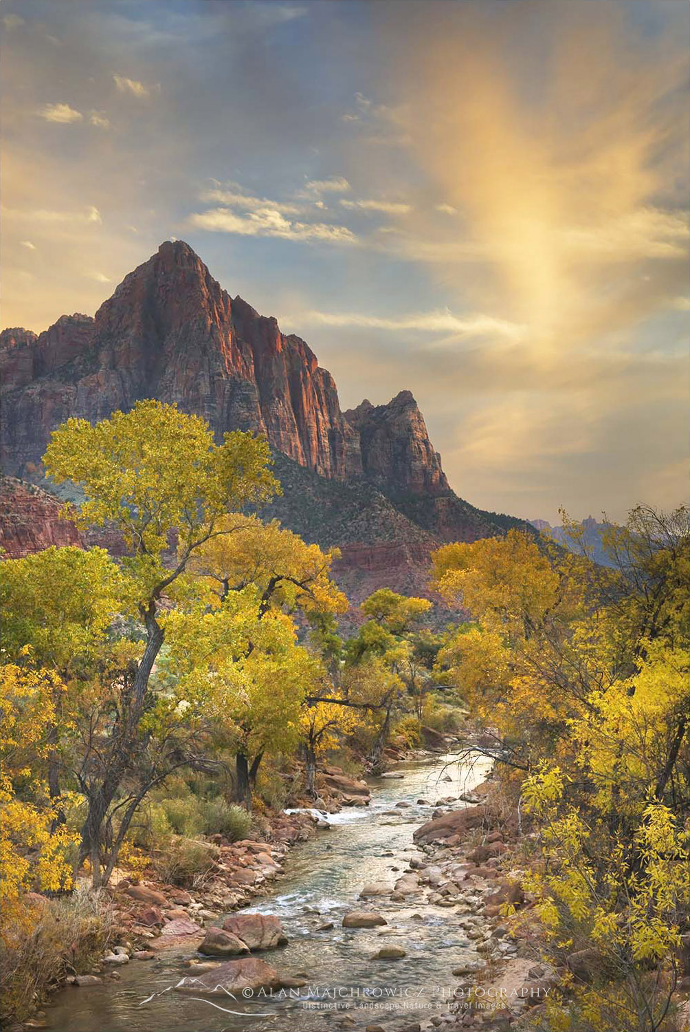 Autumn along the Virgin River, The Watchman in the distance, Zion National Park Utah